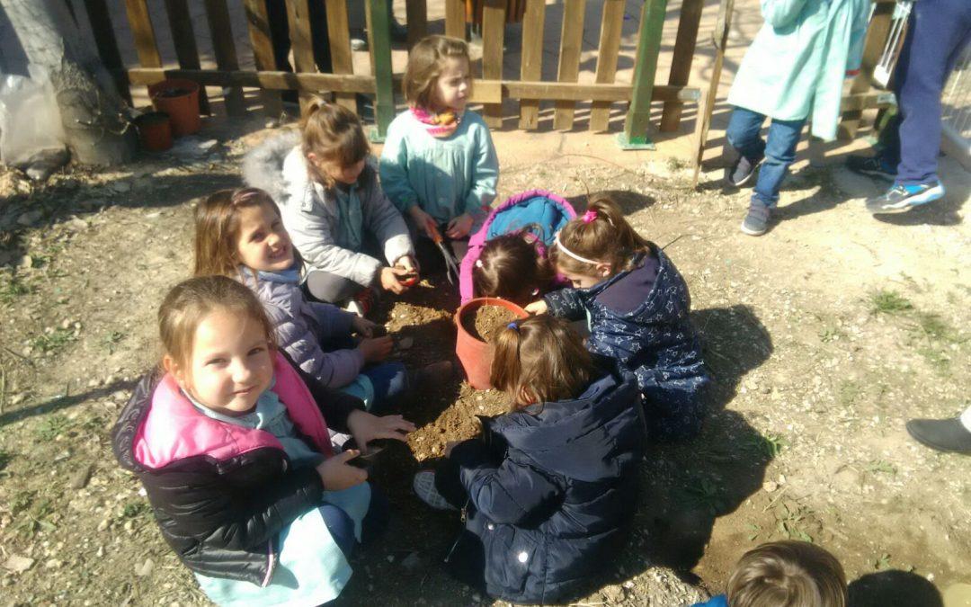 Proyecto educativo comedor: Alimentando tu arte