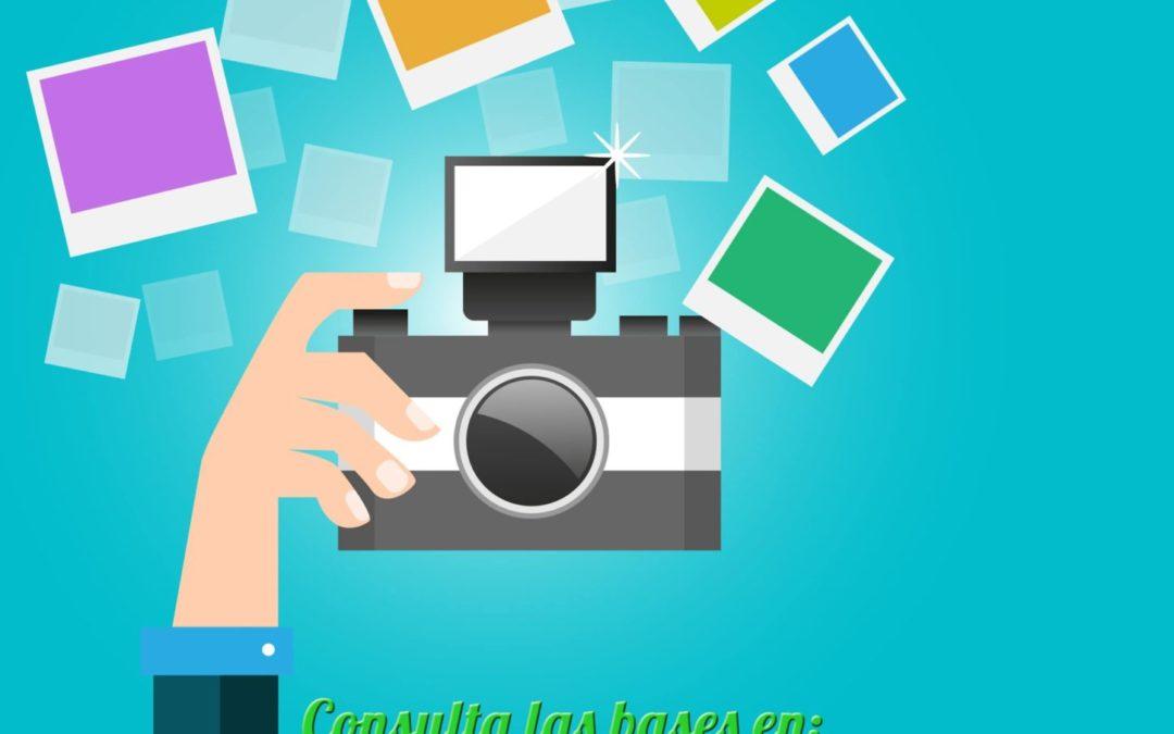 IV Concurso de Fotografía «Festa de la Primavera»